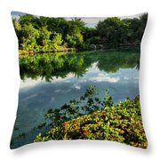 Chankanaab Mexico Lagoon Throw Pillow