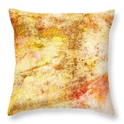 Chaos Theory Throw Pillow
