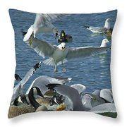 Chaotic Behavior Throw Pillow
