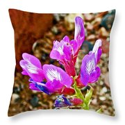 Chaparral Pea In Painted Desert Of Petrified Forest National Park-arizona  Throw Pillow