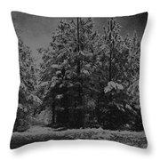 Charcoal Snowfall Throw Pillow