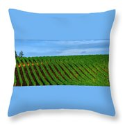 Chardonnay Sky 17990 Throw Pillow