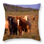 Charge Of The Mustangs  Throw Pillow by Jeanne  Bencich-Nations