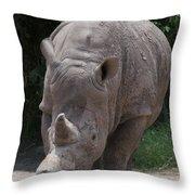 Waco Texas Rhinoceros Throw Pillow