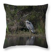 Charleston Birds Throw Pillow