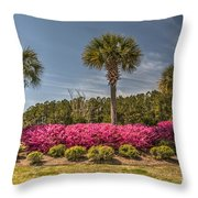 Charleston In The Spring Throw Pillow