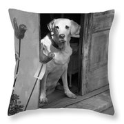 Charleston Shop Dog In Black And White Throw Pillow