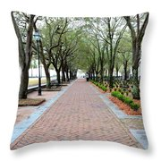 Charleston Waterfront Park Walkway Throw Pillow