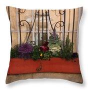 Charleston Window Garden Throw Pillow