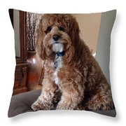 Charley At Home Throw Pillow