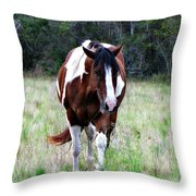Charlie Charlie Throw Pillow