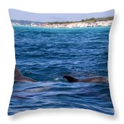 Chasing Dolphins  Throw Pillow