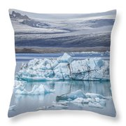Chasing Ice Throw Pillow