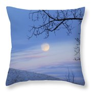 Chasing The Day Away Throw Pillow