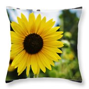 Chasing The Sun Throw Pillow