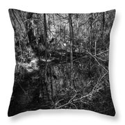 Chassahowitzka Number One Throw Pillow