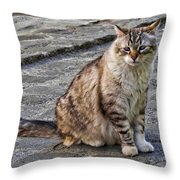 Chat Throw Pillow