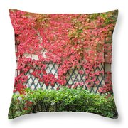 Chateau Chenonceau Vines On Wall Image One Throw Pillow