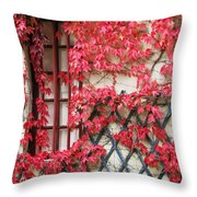 Chateau Chenonceau Vines On Wall Image Three Throw Pillow