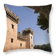 Chateau Of King Rene, France Throw Pillow