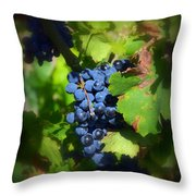 Chateauneuf Du Pape Hidden Treasure Throw Pillow