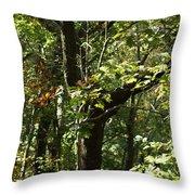 Chattahoochee Riverwalk Throw Pillow