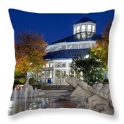 Chattanooga Park At Night Throw Pillow