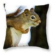 Chatty Squirrel Throw Pillow