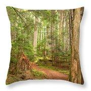 Cheakamus Lake Path Throw Pillow