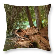Cheakamus Lake Rainforest - British Columbia Throw Pillow