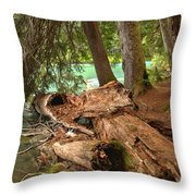 Cheakamus Lake Shoreline Throw Pillow