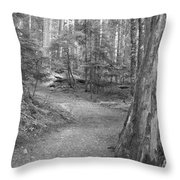 Cheakamus Trail In Black And White Throw Pillow