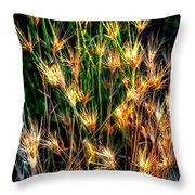 Cheat Grass 15750 Throw Pillow