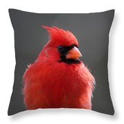 Check Me Out Throw Pillow