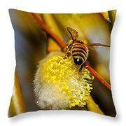 Check Out My Beehind Throw Pillow