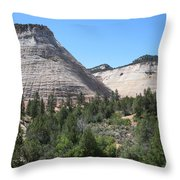 Checkerboard Mesa Throw Pillow