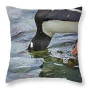 Checking For Orca... Throw Pillow