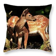 Checking The Back Trail Throw Pillow