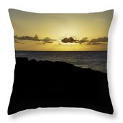 Checking The Morning Catch Throw Pillow