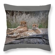 Chee-laxing Throw Pillow
