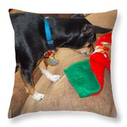 Looking For His Gifts Throw Pillow