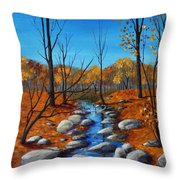 Cheerful Fall Throw Pillow by Anastasiya Malakhova