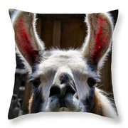 Cheese Throw Pillow