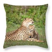 Cheetah Cub Acinonyx Jubatus Playing Throw Pillow