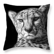 Cheetah In Black And White Throw Pillow