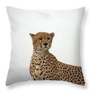 Cheetah In Serengeti. Throw Pillow