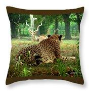 Cheetah Lunch-87 Throw Pillow