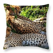 Cheetah - Masai Mara - Kenya Throw Pillow
