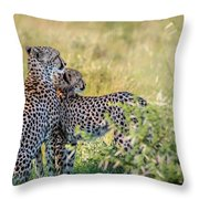 Cheetah Mother And Son Throw Pillow