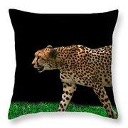Cheetah On The Prowl Throw Pillow